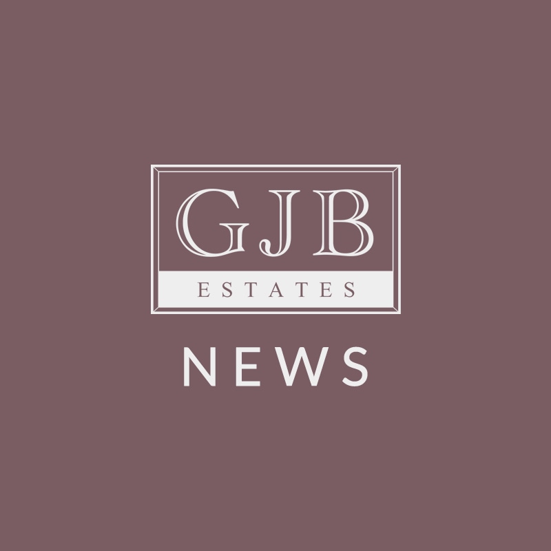 GJB News red